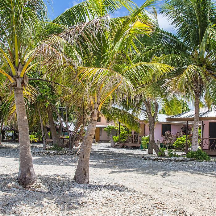 Pension teina marie rangiroa tahiti tourisme for Rangiroa urlaub