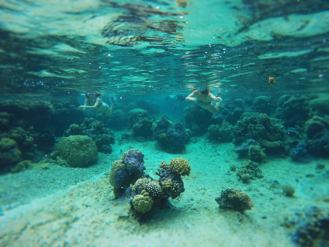 https://tahititourisme.de/wp-content/uploads/2017/08/Bora-Bora-Reef-Discovery-2.jpg