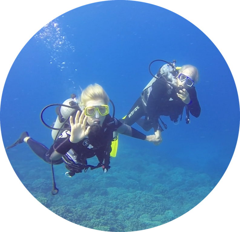 https://tahititourisme.de/wp-content/uploads/2017/08/Divers-in-the-first-try.png