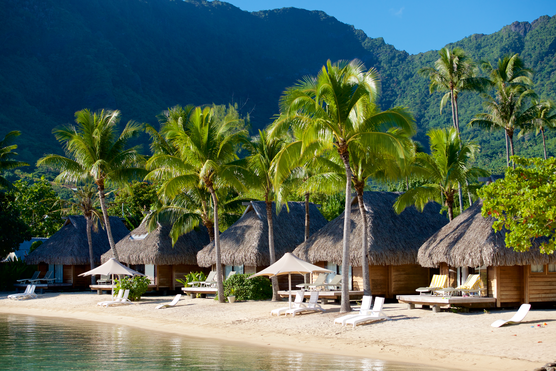 https://tahititourisme.de/wp-content/uploads/2017/08/HEBERGEMENT-Manava-Beach-Resort-and-Spa-Moorea-2-Tim_McKenna.jpg