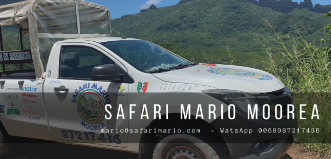 https://tahititourisme.de/wp-content/uploads/2017/08/Safari-Mario-Moorea.png