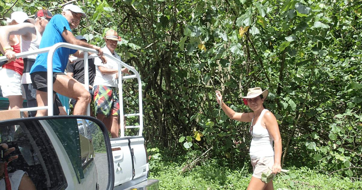 https://tahititourisme.de/wp-content/uploads/2017/08/Tahiti-Safari-Expeditions_1140x500-min.png