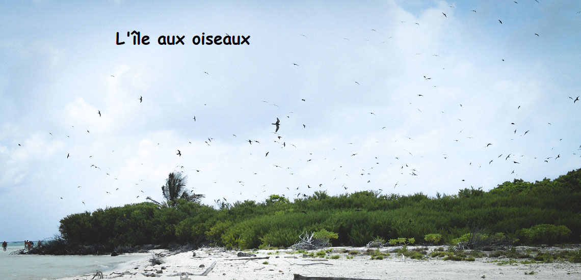 https://tahititourisme.de/wp-content/uploads/2017/08/Tahiti-Voile-et-Lagon-photo-de-couv-2.jpg