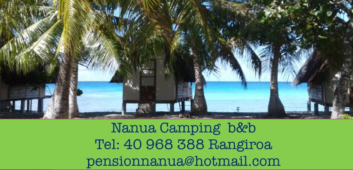 https://tahititourisme.de/wp-content/uploads/2017/08/nanuacamping_1140x550.png