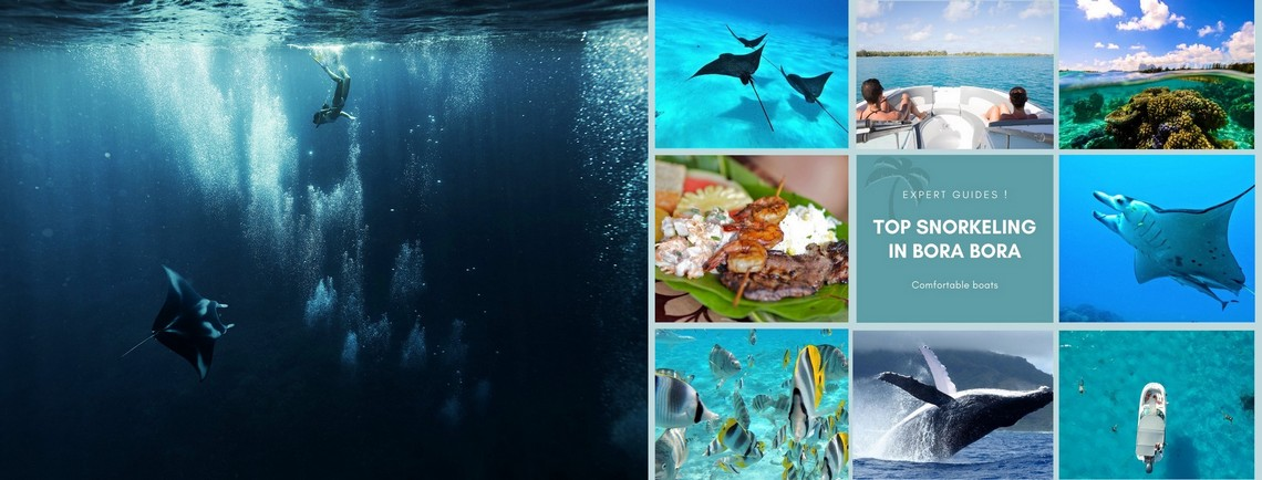 https://tahititourisme.de/wp-content/uploads/2017/08/reef-discovery-bora-bora.jpg