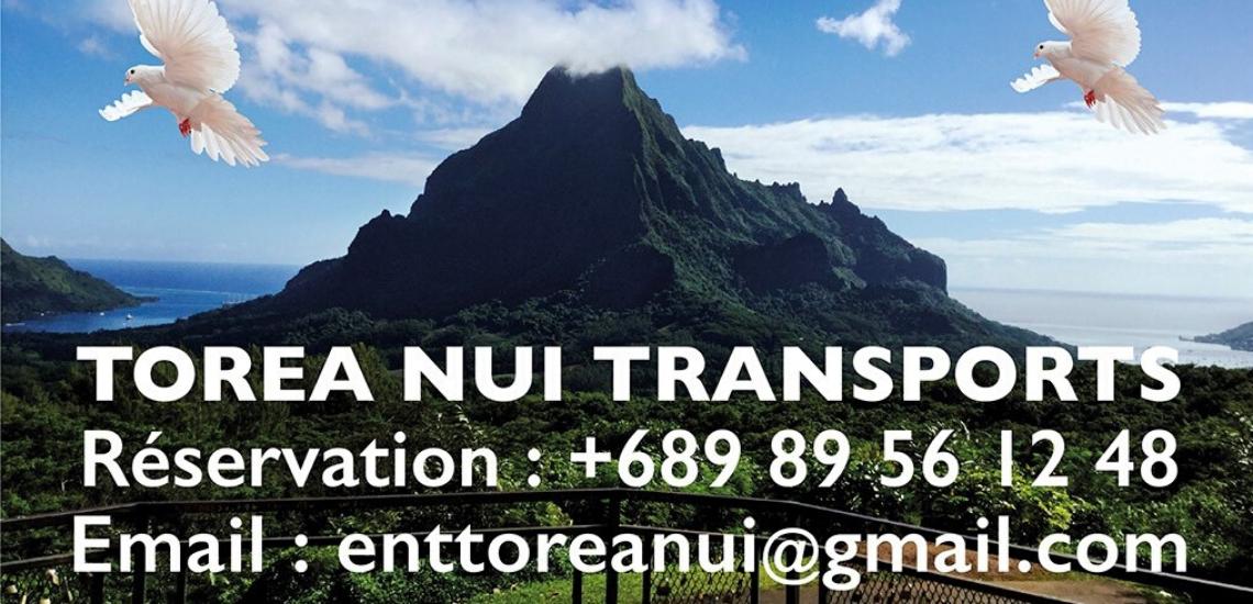 https://tahititourisme.de/wp-content/uploads/2017/08/torea-nui-transports_1140x550.png