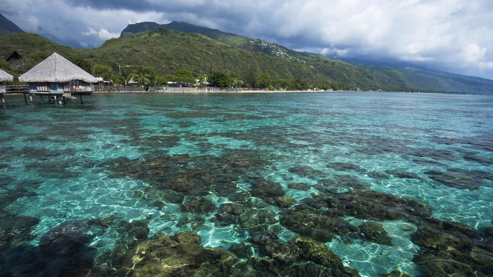 https://tahititourisme.de/wp-content/uploads/2018/03/mer1906ed-163099-Coral-garden.jpg