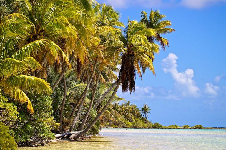 Tahiti – … endlich in die Südsee!