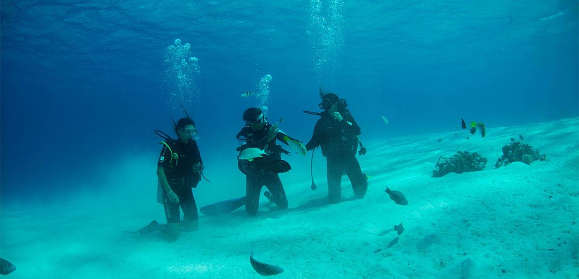 https://tahititourisme.de/wp-content/uploads/2019/04/Tahiti-Nui-Diving-1140x550.jpg