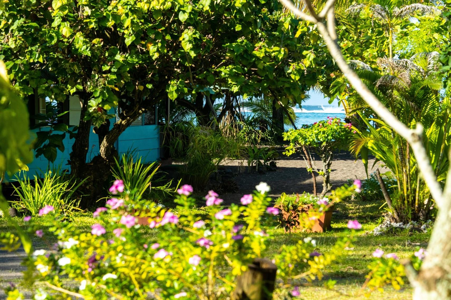 https://tahititourisme.de/wp-content/uploads/2019/08/copie-tahiti-tourisme-800ko-1.jpg
