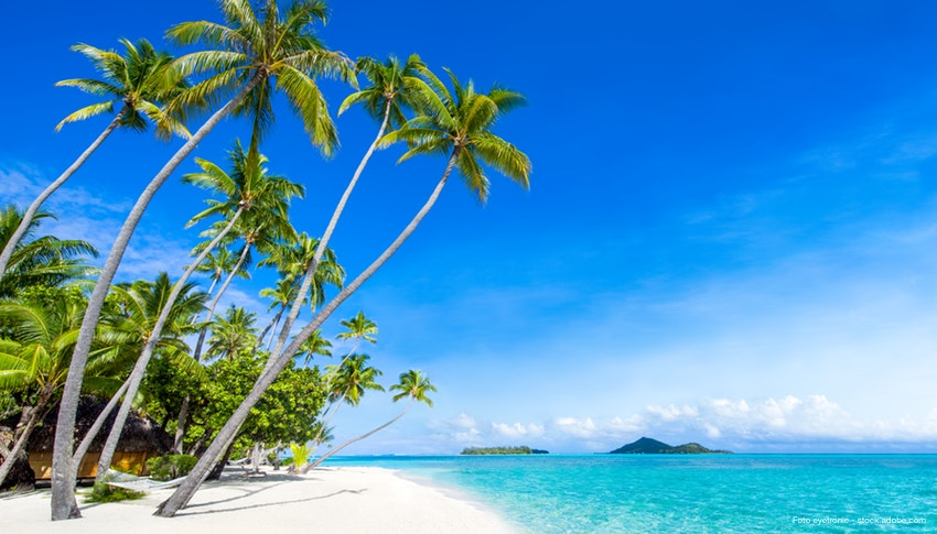https://tahititourisme.de/wp-content/uploads/2019/09/56347_Traumstrand_auf_den_Fidschi-Inseln_-_Palmen_Original.jpg