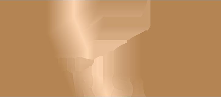 Ikarus Tours GmbH