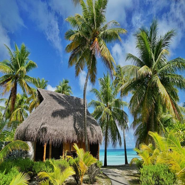 Südsee – Tahiti, Tuamotu-Inseln, Tikehau