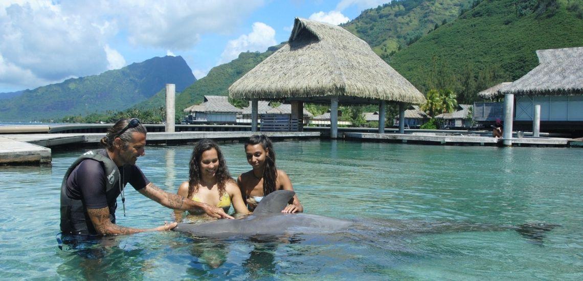 https://tahititourisme.de/wp-content/uploads/2021/01/Offre_Moorea-Dolphin-Center.jpg